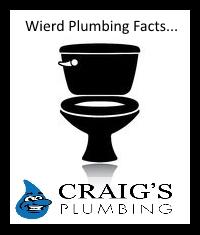 weird plumbing facts